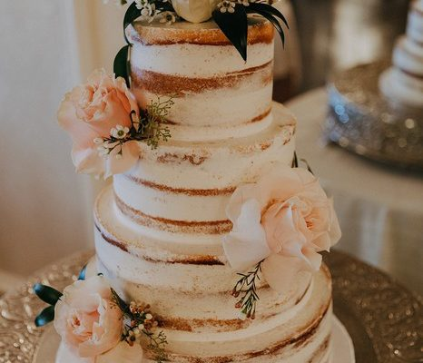 HalfNaked_WeddingCake